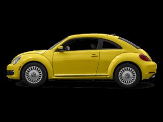 2016-Beetle