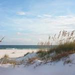 Beautiful beach and dunes at sunset