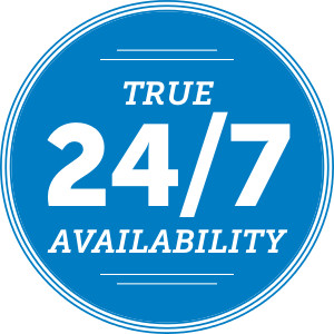24-7 True Availability icon