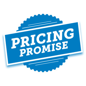 Pricing Promise icon